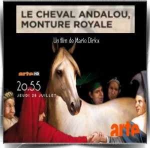 Le cheval andalou monture royale (2016)